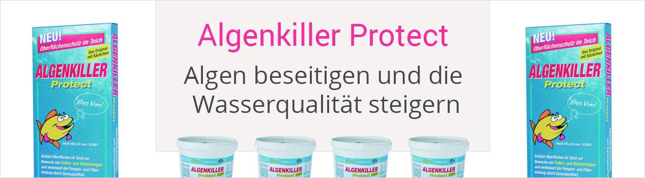 Algenkiller Protect, Algen beseitigen und die