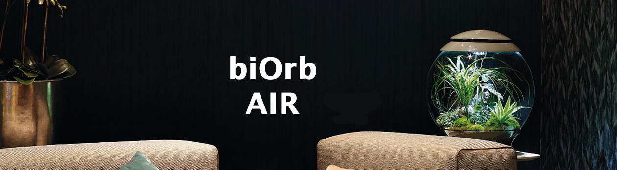 biOrb Stube